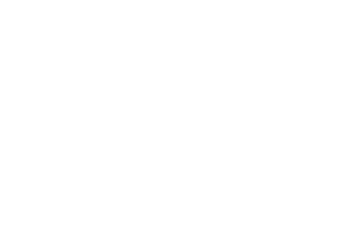Stelios White logo